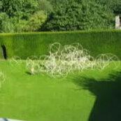 Land art bestaande uit 100 pvc globes los liggend in een afgesloten binnen tuin van DE NIEUWE GANG BEUNINGEN  sept 2008